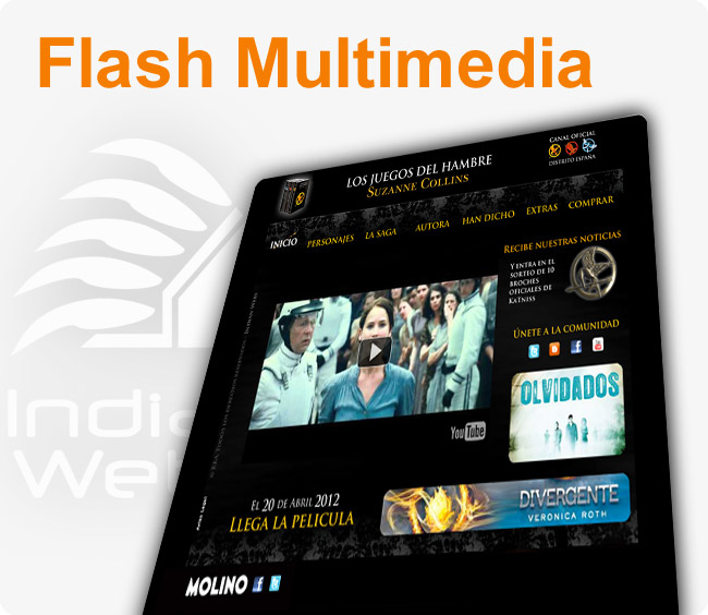 Flash Multimedia
