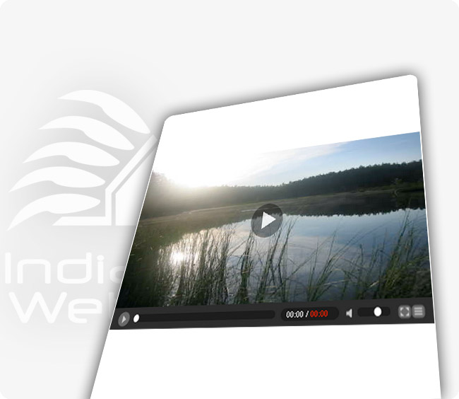 Video Web